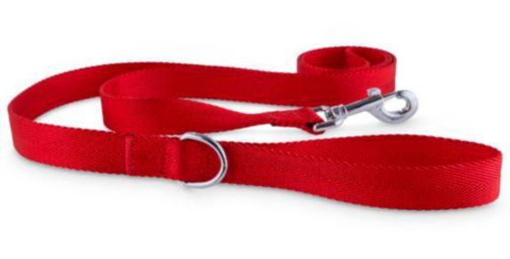 Laisse en nylon pour chien Petco, rouge, 6 pi