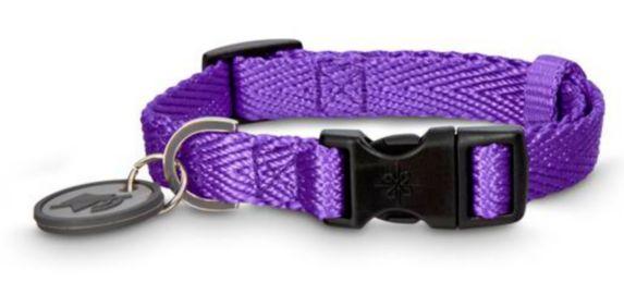 Collier ajustable en nylon pour chien Petco, violet, petit