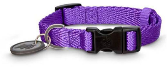 Petco Adjustable Nylon Dog Collar, Purple, 2X-Large/3X-Large