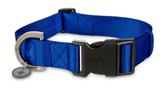 Collier ajustable en nylon pour chien Petco, bleu, 2XL/3XL Image de l'article
