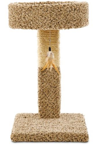 Petco Cat Perch & Post, 24-in