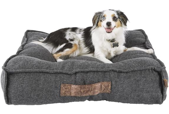 Petco Lounger Memory Foam Dog Bed, Grey, 28-in x 28-in