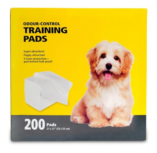 Dog Training Pads, 21-in x 21-in, 200-pk Product image