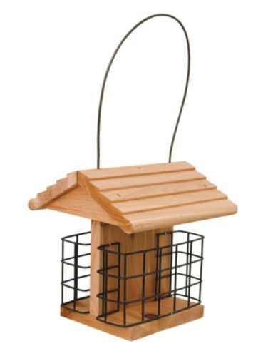 Cedar Suet Station Bird Feeder