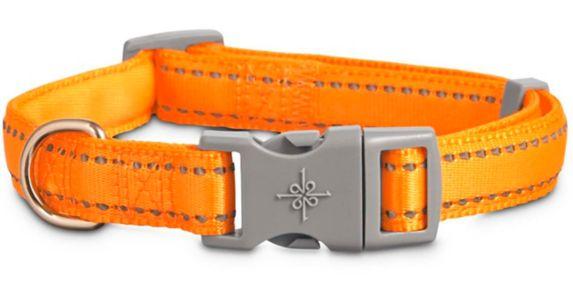 Collier rembourré ajustable réfléchissant Petco, orange