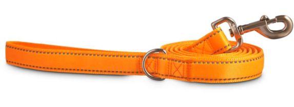 Petco Padded Reflective Lead, Orange