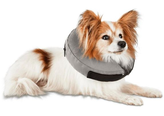 Well & Good Inflatable Dog Collar