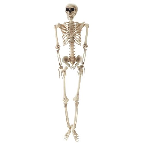 For Living Hanging Skeleton Décor, 5-ft Product image
