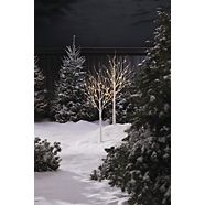 CANVAS Birch Tree with Pre-Lit LED Christmas Lights, 48-count, 2-pk