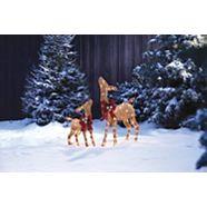 CANVAS Incandescent Golden Charm Deer, 2-pk