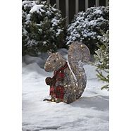 CANVAS Pre-Lit LED  Frosted Squirrel, 20-in