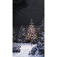 CANVAS LED Winter Forest Tree, 6-ft