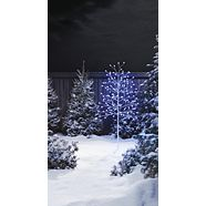CANVAS Colour-Changing LED Birch, Red/Green/Blue, 5-ft