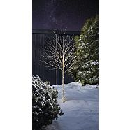Arbre de nuit étoilée à DEL CANVAS, blanc chaud, 6 pi