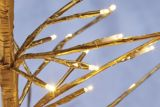 CANVAS LED Golden Trees, Warm White, 2-pk | CANVASnull