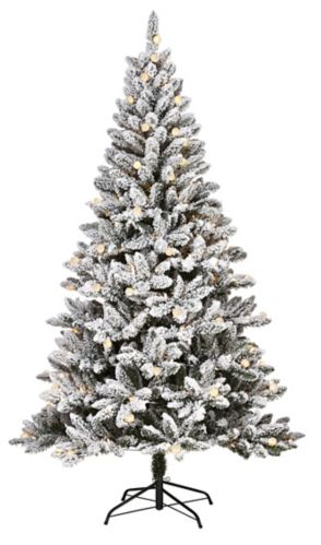 NOMA Cypress Pre-Lit Christmas Tree, 7-ft
