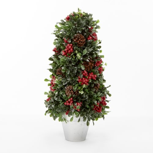 Christmas Tree Store Erie Pa: Boxwood Topiary Tree