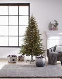 CANVAS Pre-Lit Jasper Fir Christmas Tree, 7-ft | CANVAS | Canadian Tire