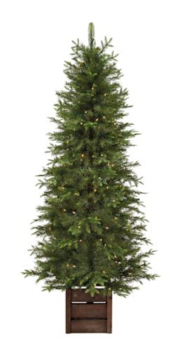 CANVAS Pre-Lit Bromley Fir Potted Christmas Tree, 6-ft Product image