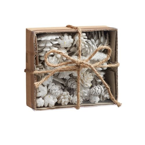CANVAS White Pinecone and Acorn Set, 36-pc Product image