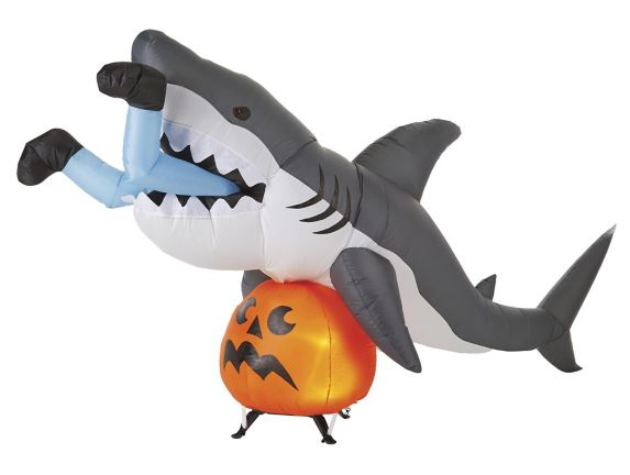 Airblown Shark Snack