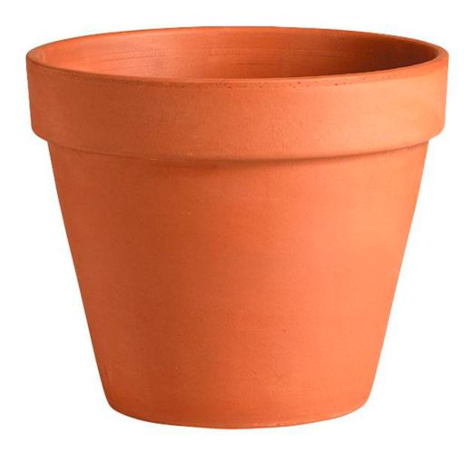 Terra Cotta Standard Clay Pot
