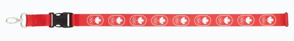 Cordon Équipe olympique canadienne, motifs Image de l'article