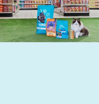 All your pet needs, All in one place  Find everything to keep your furry friend happy and healthy.  Shop Now