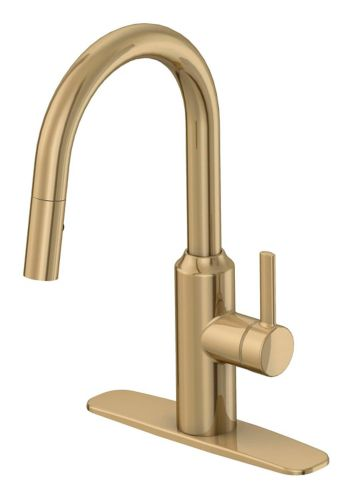 Danze Colby 1-Handle Pull Down Kitchen Faucet, Gold