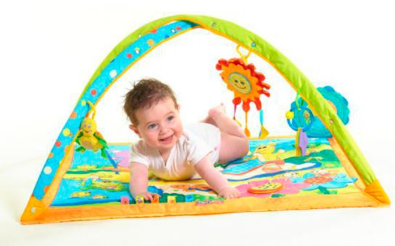 Tiny Love Sunny Stroll Arch Toy Product image