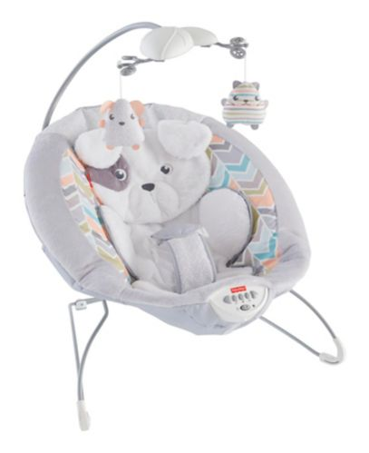 Fisher-Price Sweet Snugapuppy Dreams Bouncer Product image