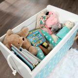 Sauder Pinwheel Rolling Toy Box, Soft White | Saudernull