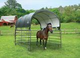 ShelterLogic Corral Shelter, 10-ft x 10-ft | Shelter Logicnull