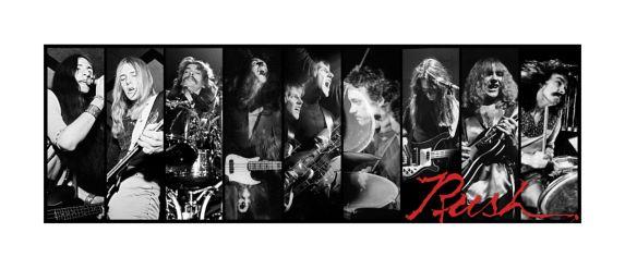 Toile du groupe Rush Image de l'article