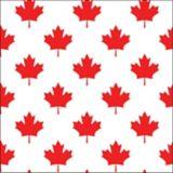 Canada Day Beverage Napkins | Good Timesnull