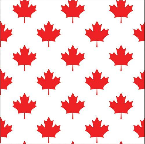 Canada Day Beverage Napkins Product image