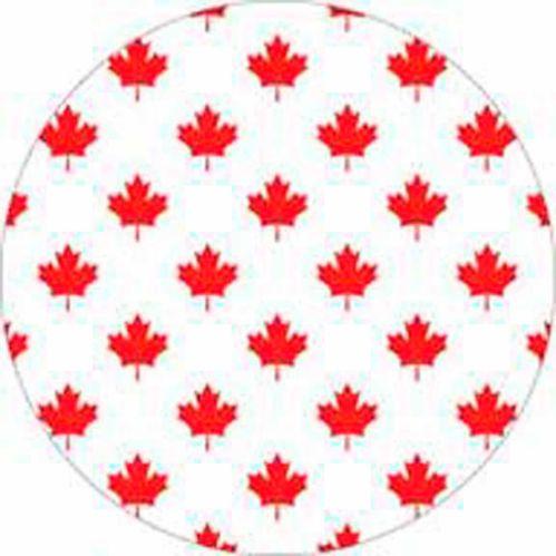 Assiettes en papier Goodtimes, fête du Canada, paq. 8 Image de l'article