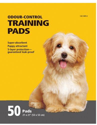 Training Pads, 50-pk Product image