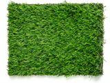 Multy Home Pre-Cut Turf Outdoor Rug, Green, 5x7-ft | Multy Homenull