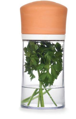 Contenant pour fines herbes Joie avec couvercle en terre cuite Image de l'article