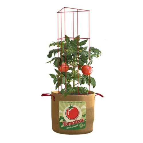Panacea Tomato Grow Bag and Plant Support, 10 gallon Product image