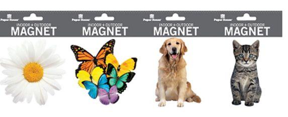 Spring Auto Magnet