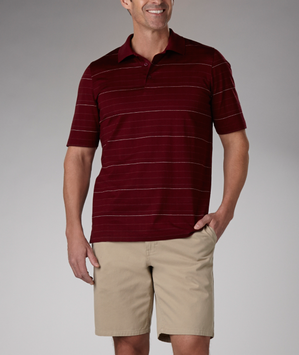 Denver Hayes: Denver Hayes Horizontal Striped Mercerized Dress Polo
