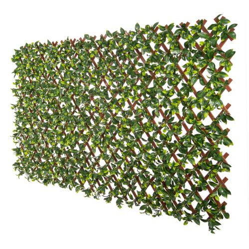 Naturae Décor Expandable Gardenia Trellis Product image