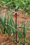 Micro-asperseur fileté demi-cercle Rain Bird, paq. 2 | Rain Birdnull