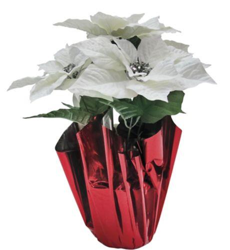 Poinsettia Image de l'article