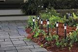 For Living Solar Stake Lights, 6-pk | FOR LIVINGnull