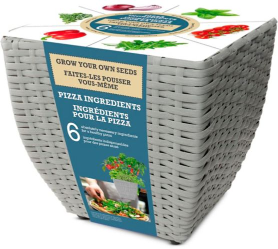Trousse de graines à thème herbes et légumes Bulbs Are Easy, ingrédients pour la pizza