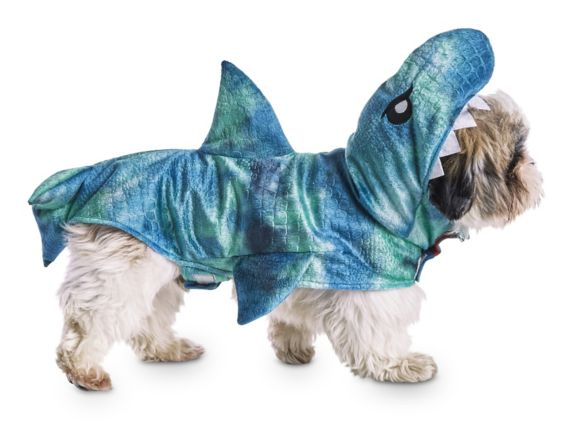 Costume d'Halloween de requin Petco