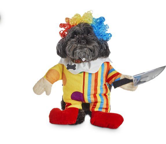 Costume d'Halloween pour chiens illusion de clown Petco